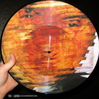 Priest in Shit + Smell & Quim Rough Skin picture disk 2009 Little Mafia Records OKC $10.00 postage paid
